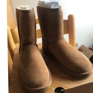 Classic short ugg boots